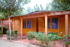 Complexe de bungalows dans un camping idéal pour les familles